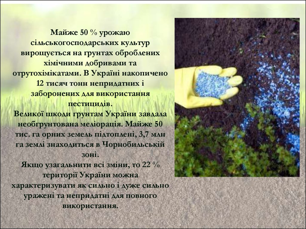 Види сільськогосподарських сортів різних культур, що вирощуються в україні в Тлярате,Беринговском,Измайлово