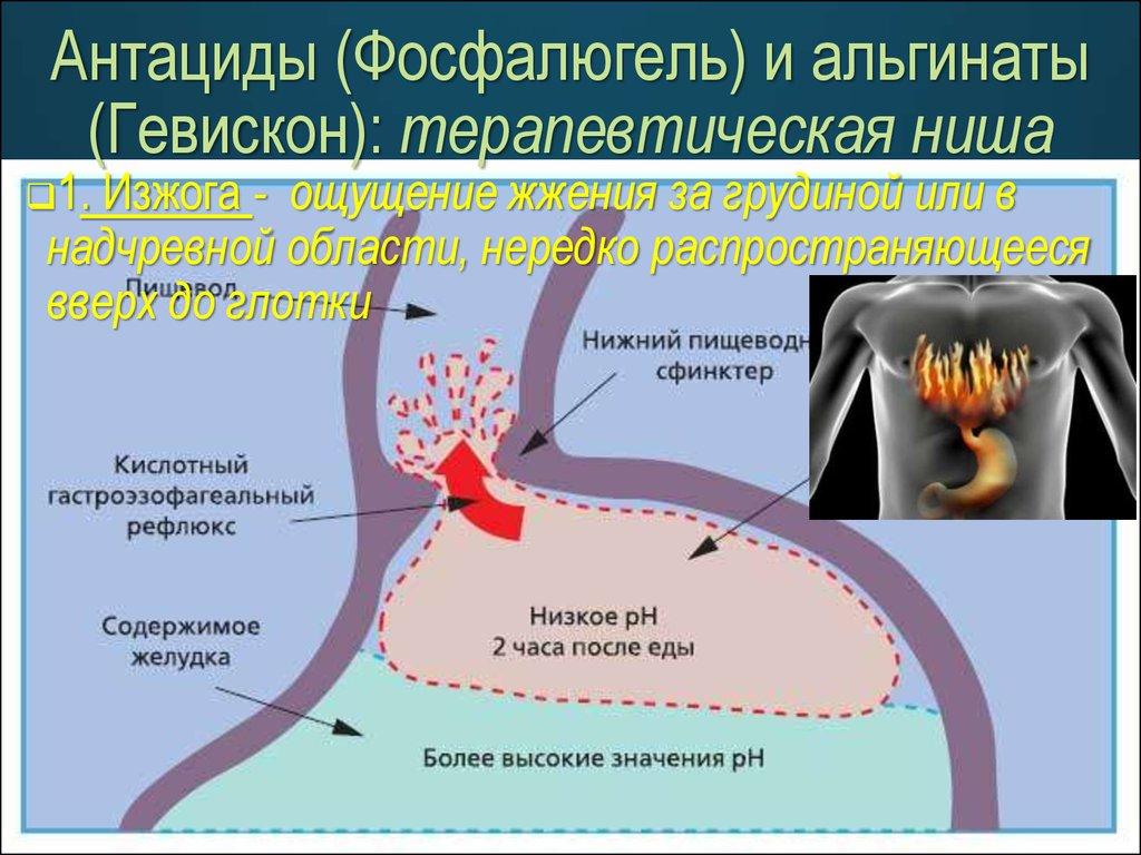 современные препараты от паразитов в кишечнике человека
