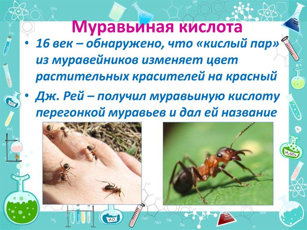 применение муравьиной кислоты в рыбалке