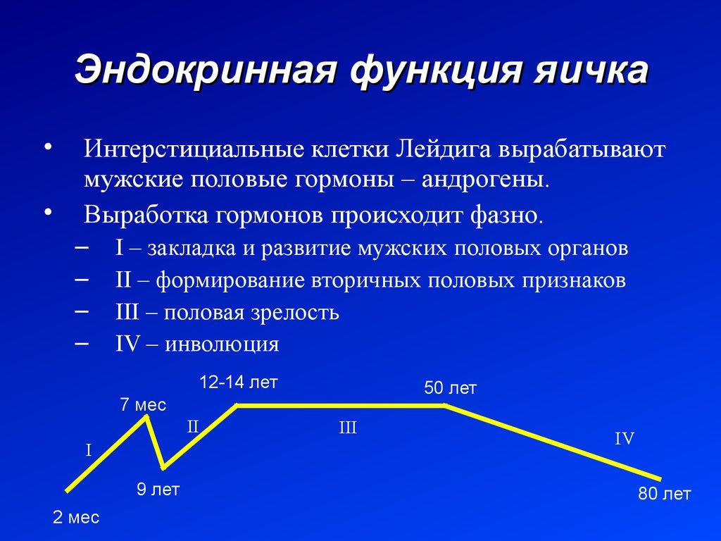 Вещи и их классификация  uchiloknet