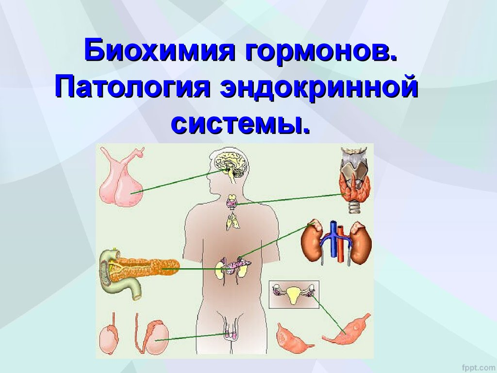 статины при кардиотоксичности химиотерапии
