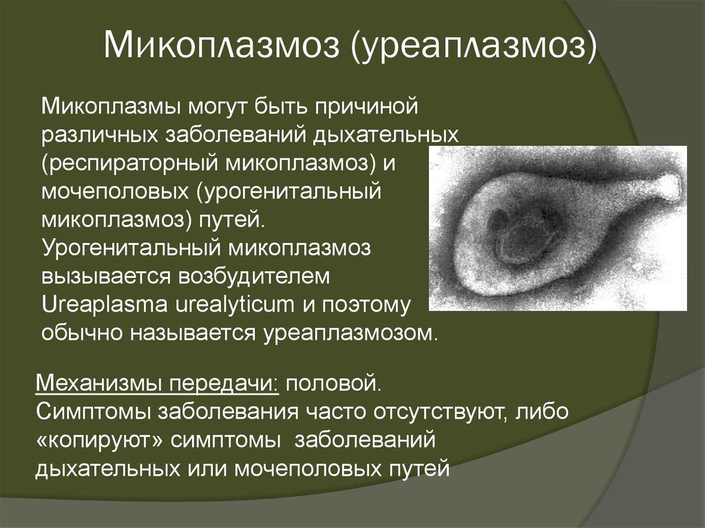 Заболевания, передающиеся половым путем - презентация онлайн