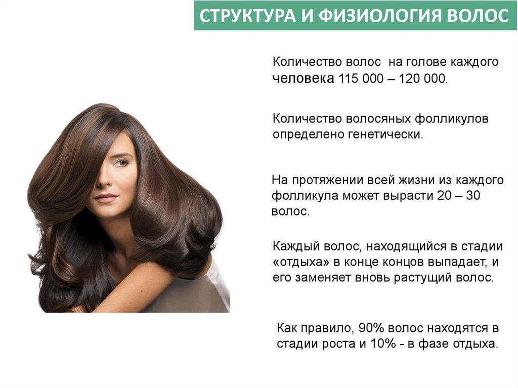 Волосы кожа головы трихология