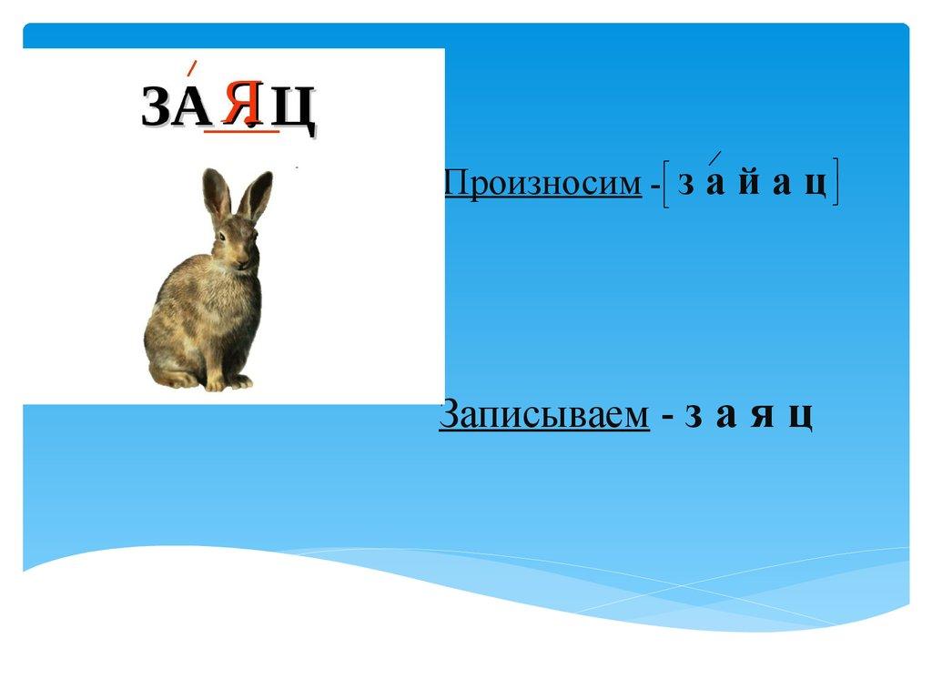 Храбрый зайчик слова - 31