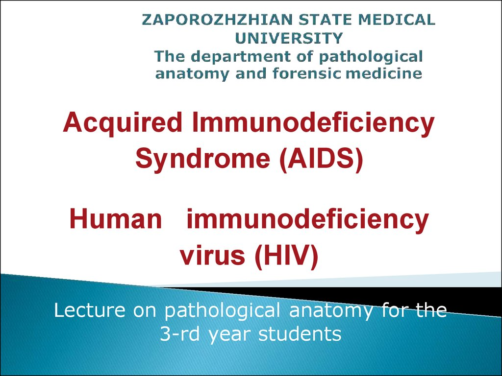 a history of the acquired immunodeficiency syndrome Ty - jour t1 - zidovudine and the natural history of the acquired immunodeficiency syndrome au - moore,richard d au - hidalgo,julia au - sugland,barbara w.