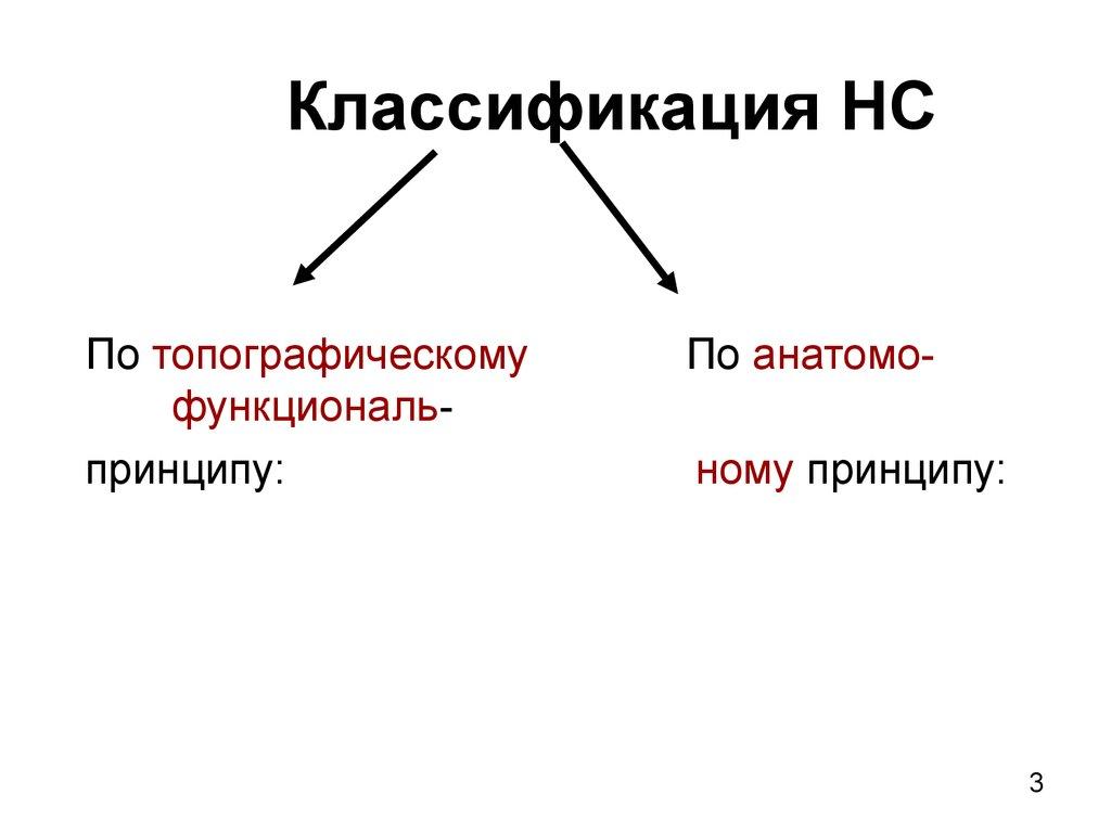 Анатомия В Стихах Артур Артузов Скачать Бесплатно