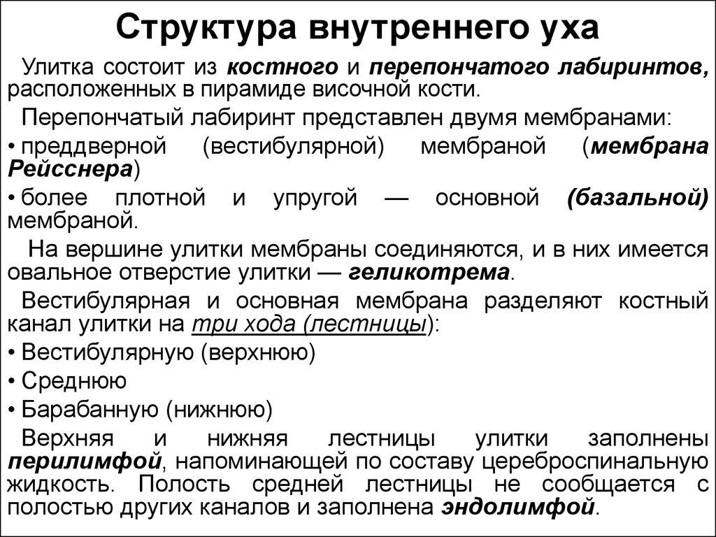 Мембрана Рейсснера