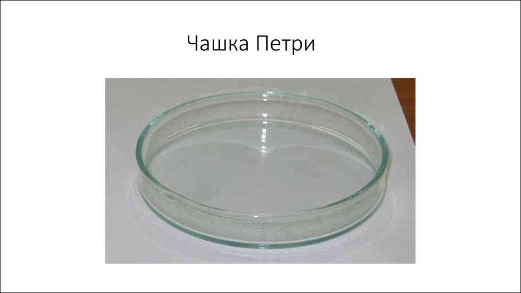 Как в чашке петри сделать прозрачный скин