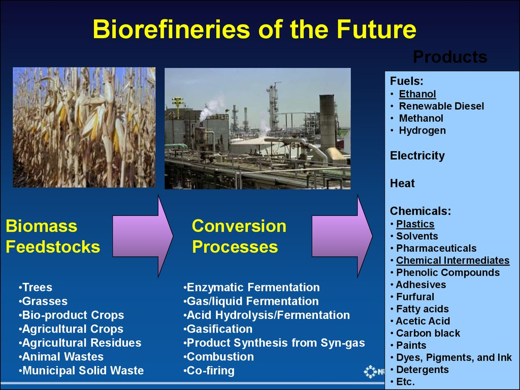 Biomass Feedstocks
