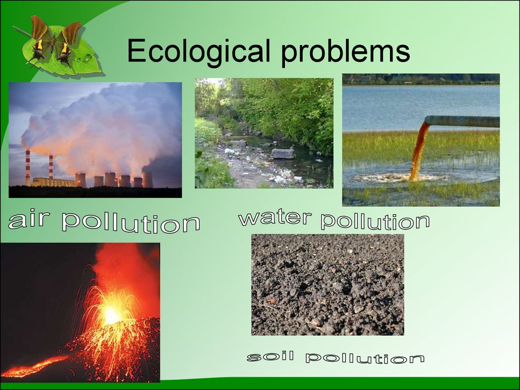 What Are Some Solutions to Environmental Problems?