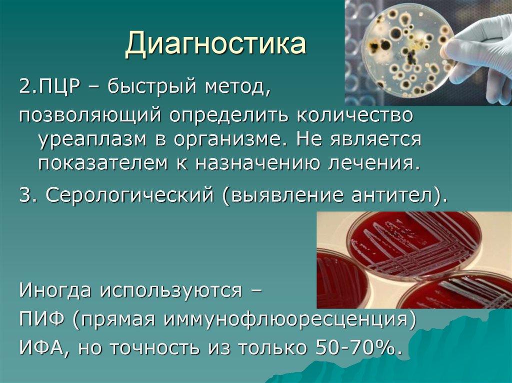 Курс валют на сегодня в беларуси ущемляют