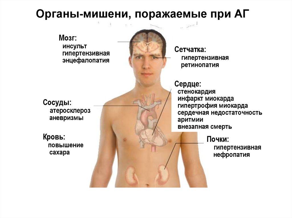 народное средство от паразитов сибирское здоровье