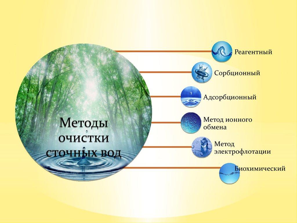 методы очистки от паразитов