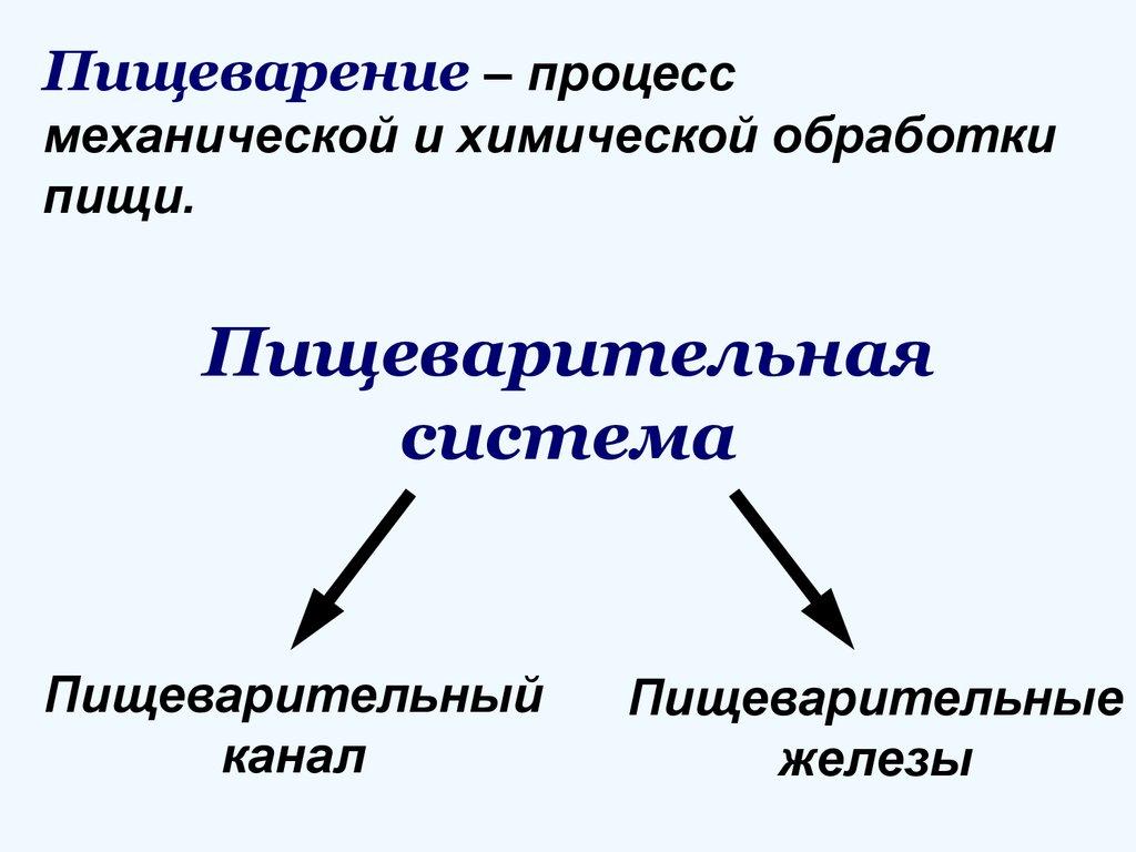 в чем состоит значение философии сегодня реферат