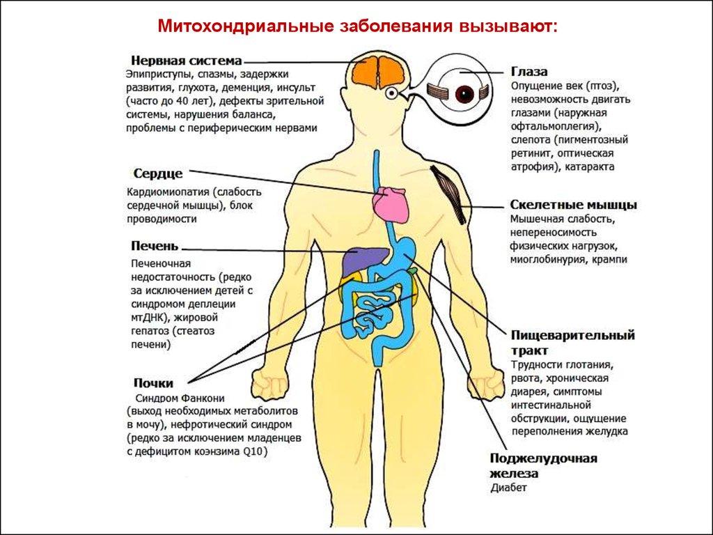 заболевания человека вызываемые паразитами