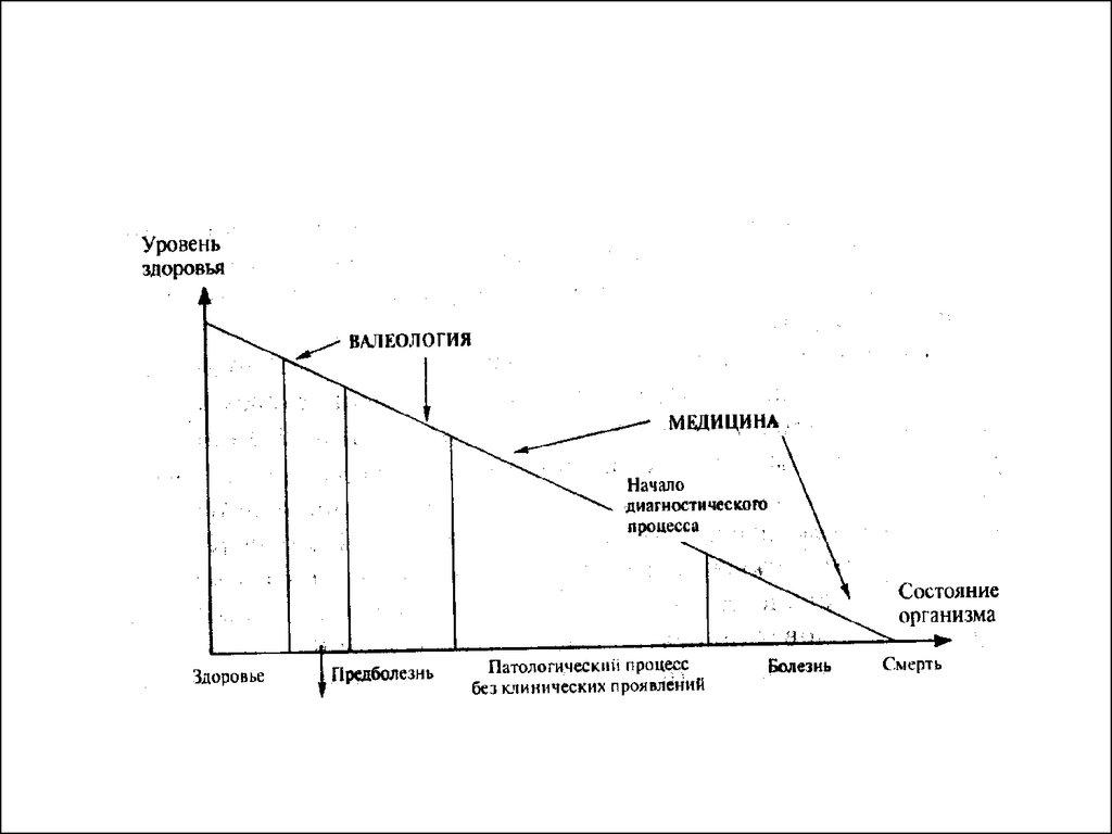 лекция здоровье и здоровый образ жизни