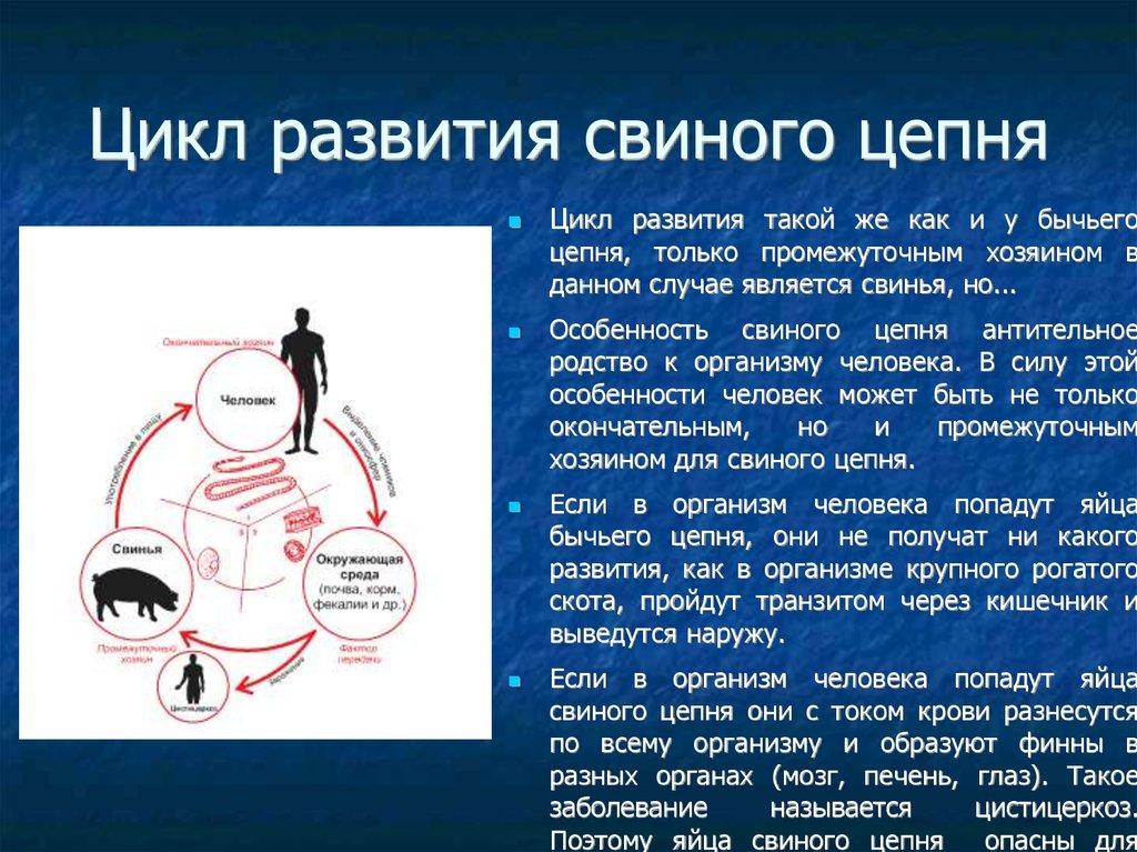 внутриклеточные паразиты человека