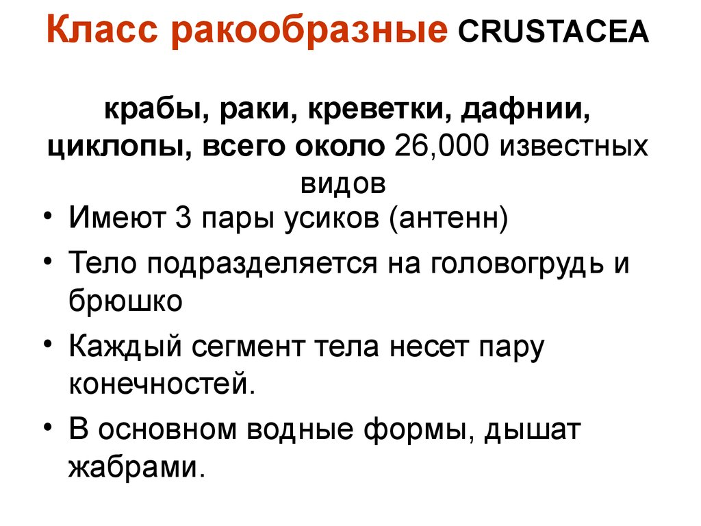 паразиты головного мозга человека симптомы