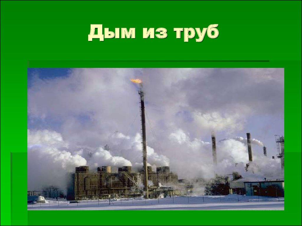 экологические права граждан реферат