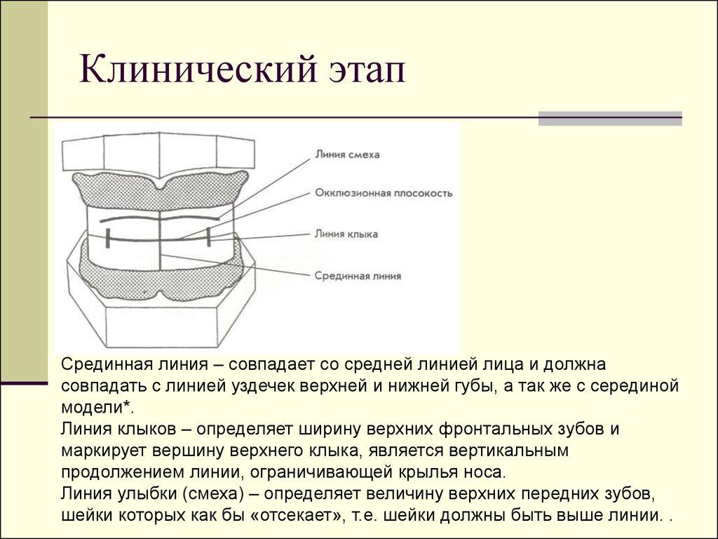 Организация И Этапы Статистического Исследования Презентация
