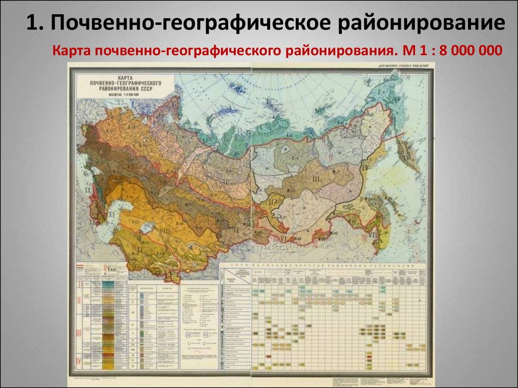 география схема климатические пояса
