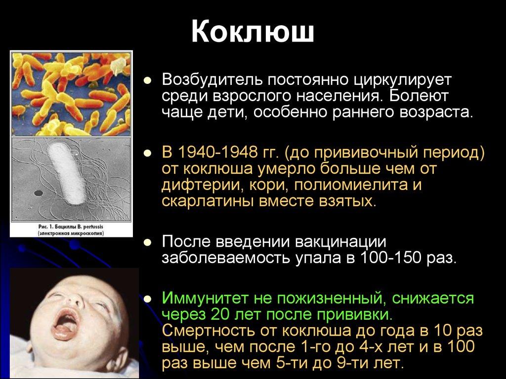 Если не лечить коклюш у взрослых в  44