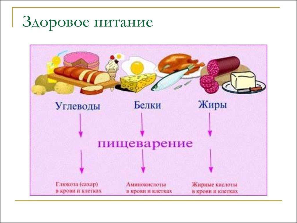 Программа тренировок для девушек в домашних условиях