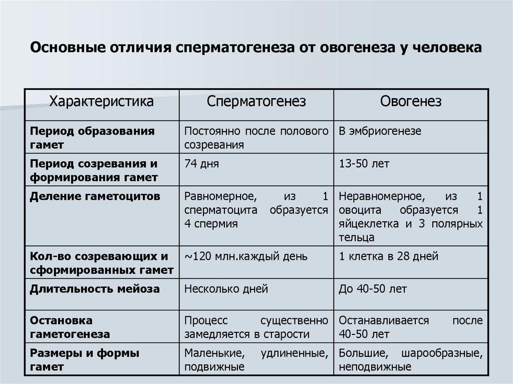 so-skolki-let-pensiya-v-rossii