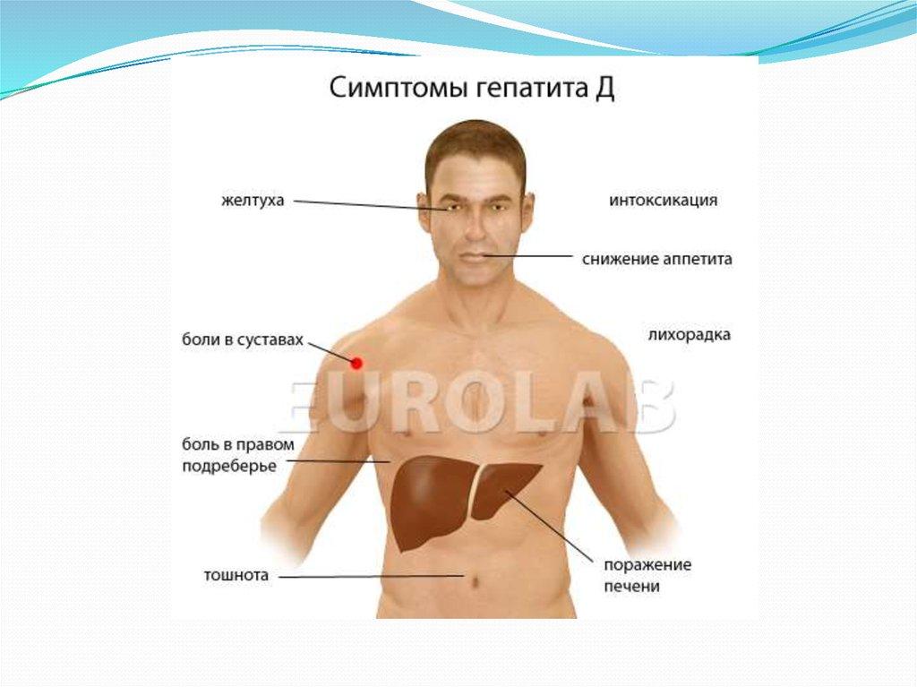 гепатит форум боли в суставах