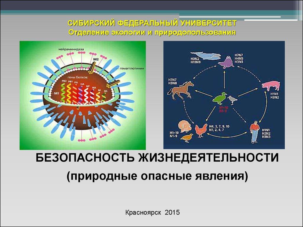 download Организационные структуры управления.