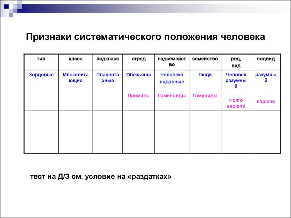 Биогенетический Закон 9 Класс Презентация