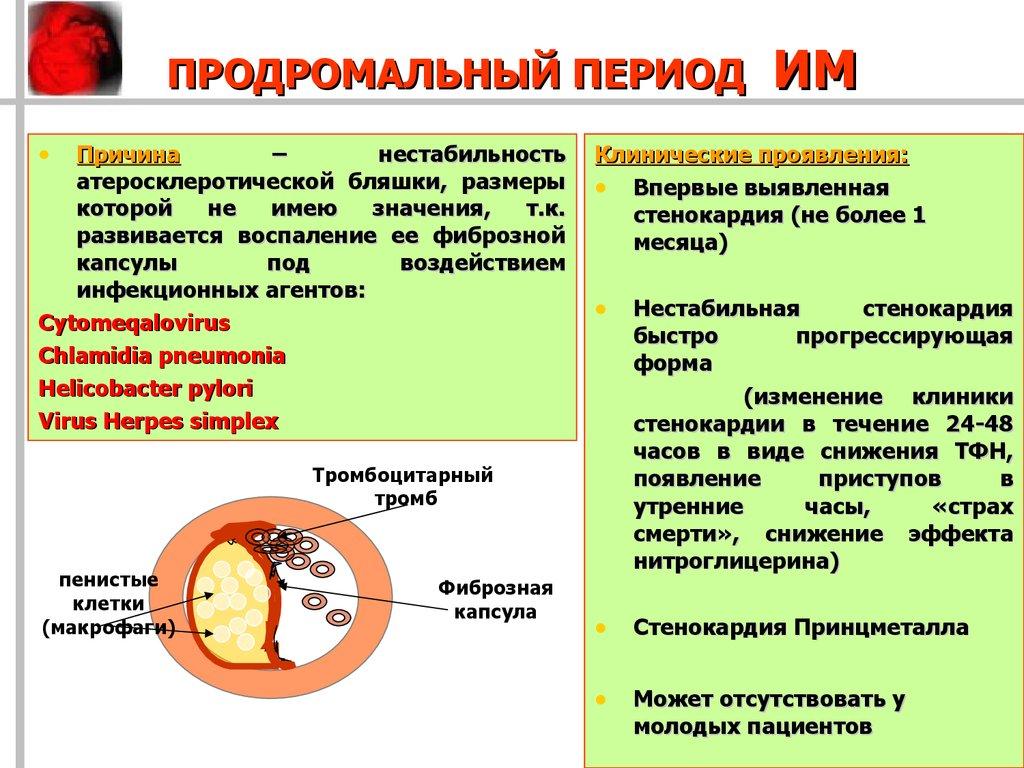 Продромальный I