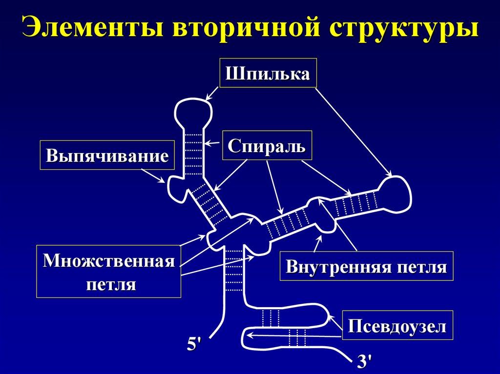 трехсторонний договор вэд образец