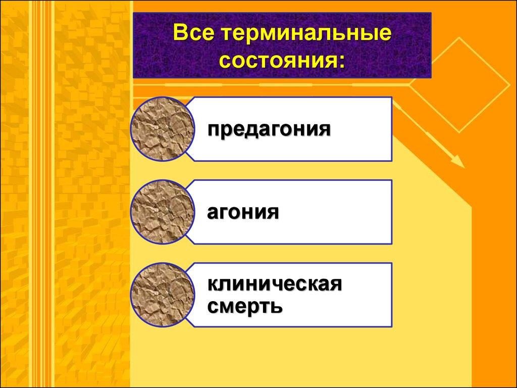 медикаментозные средства паразитов в организме человека