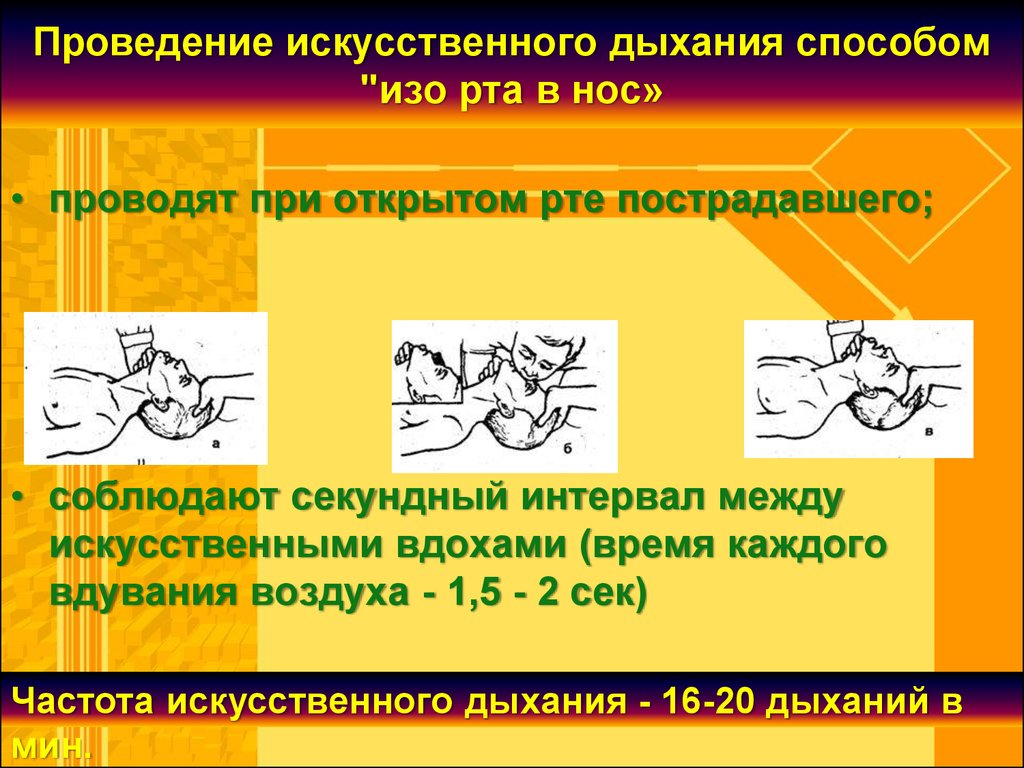 медикаментозные средства от паразитов организме человека