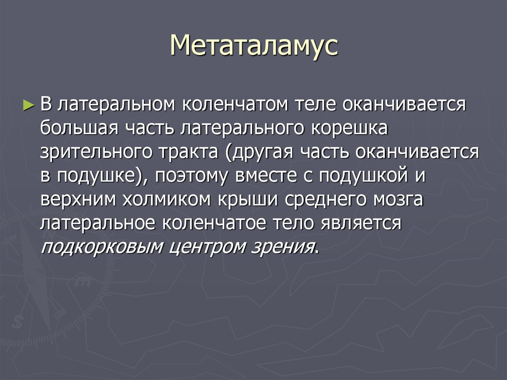 Метаталамус