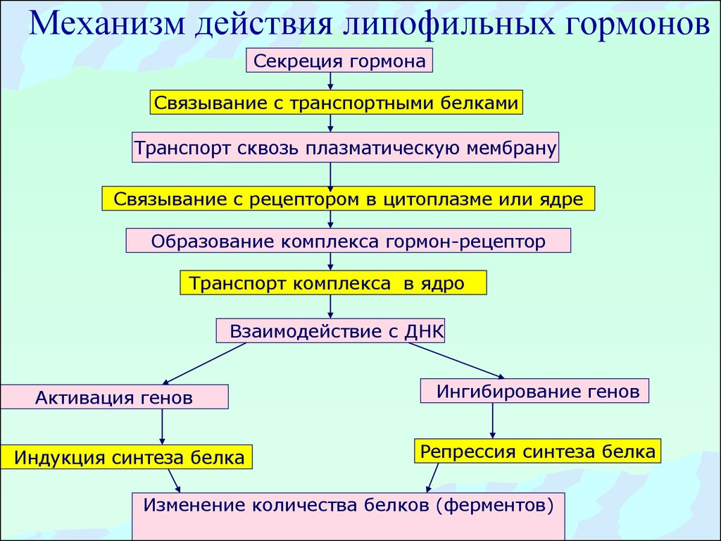 механизм действия интал