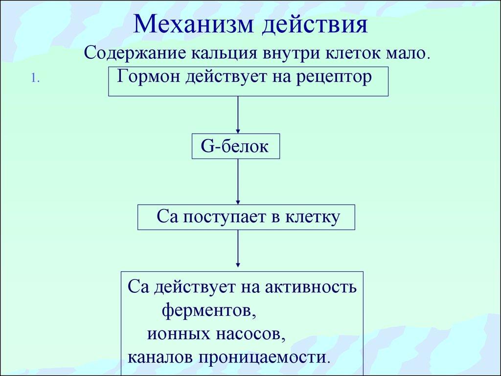 механизм обратной связи презентация