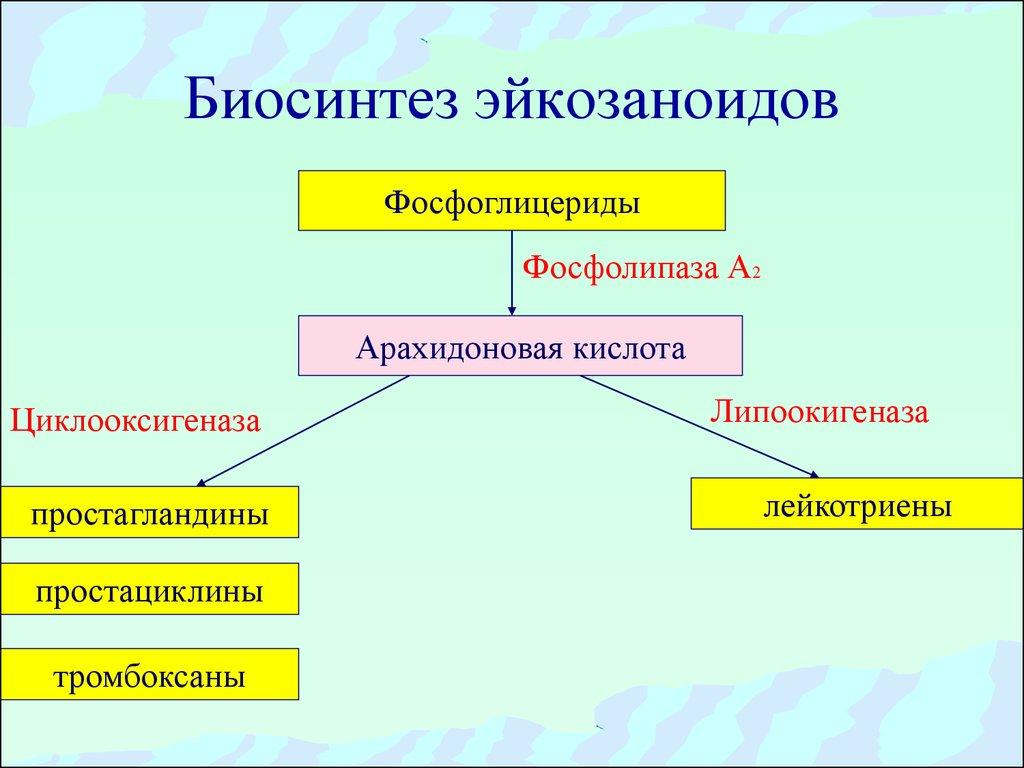 синтез статинов