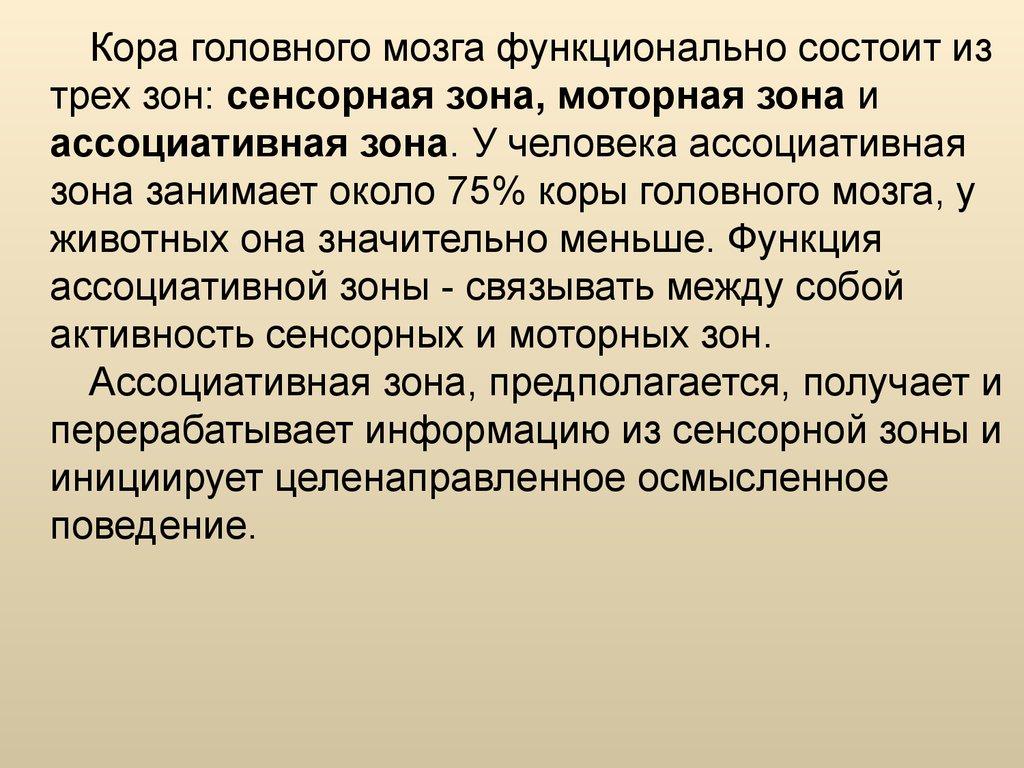 Зона Ассоциативная