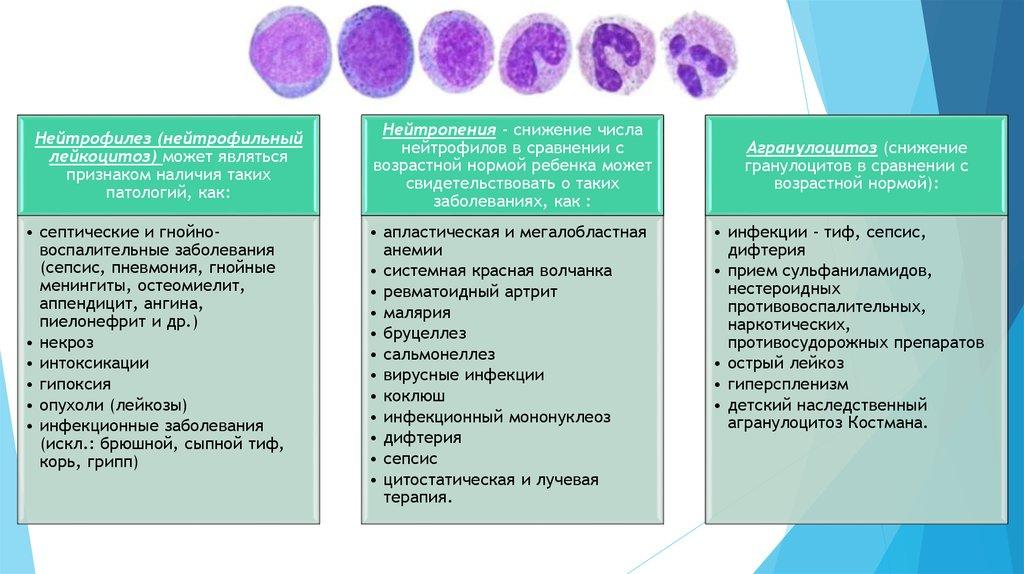 общий анализ крови показывает аллергию
