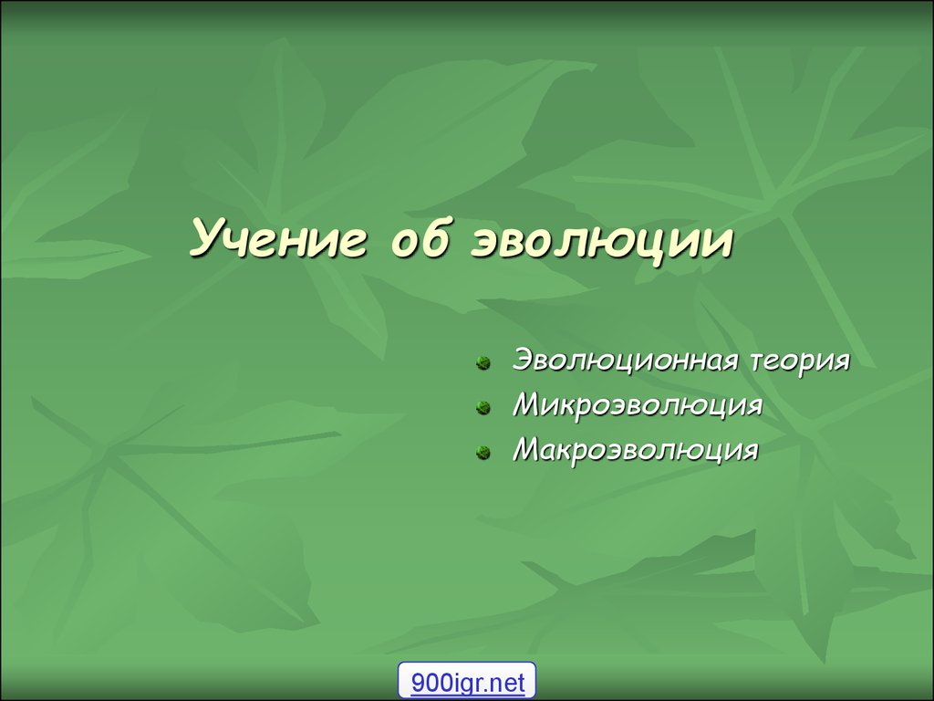 С4 эволюционное учение сайт преподавателя биологии и