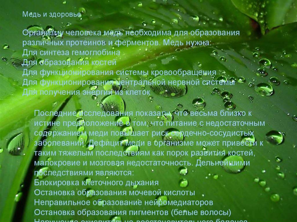 Физические и химические явления химические реакции презентация - e