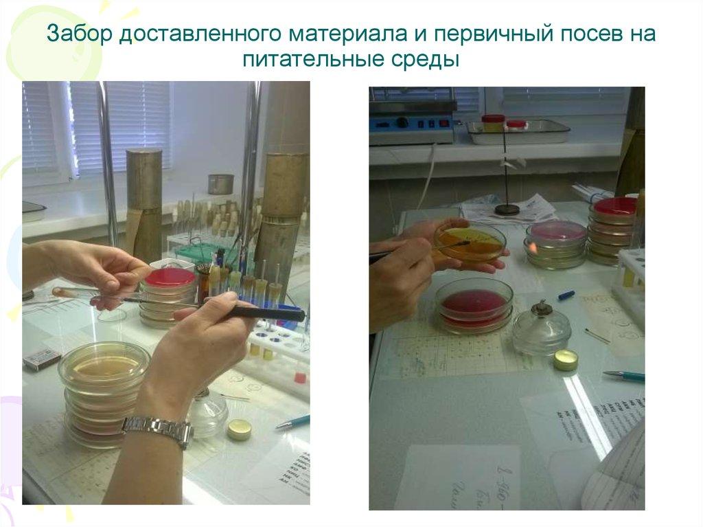 методы пцр диагностики реферат