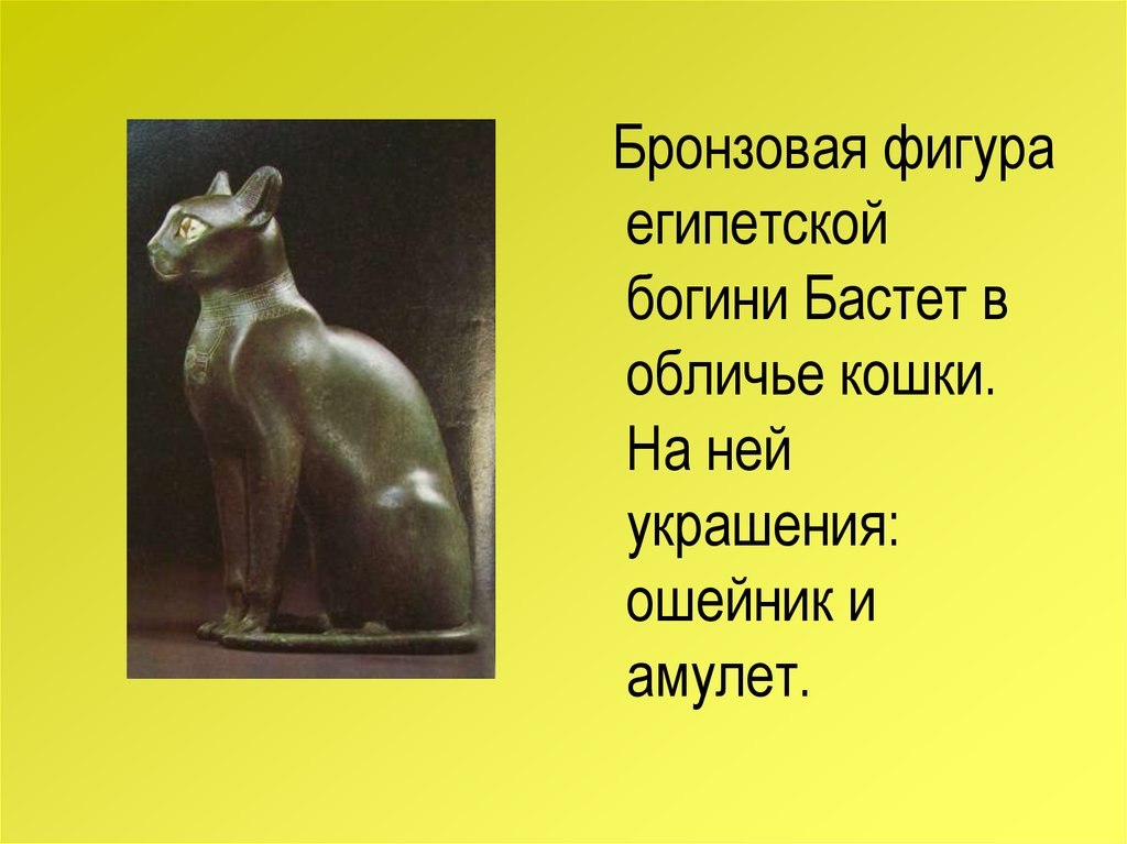 Урок биологии рассказы фото 224-387