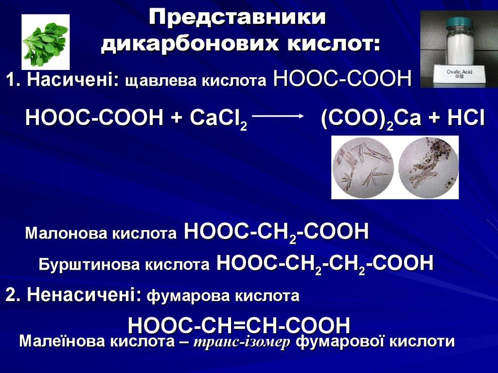 Производство Серной Кислоты Контактным Способом Презентация