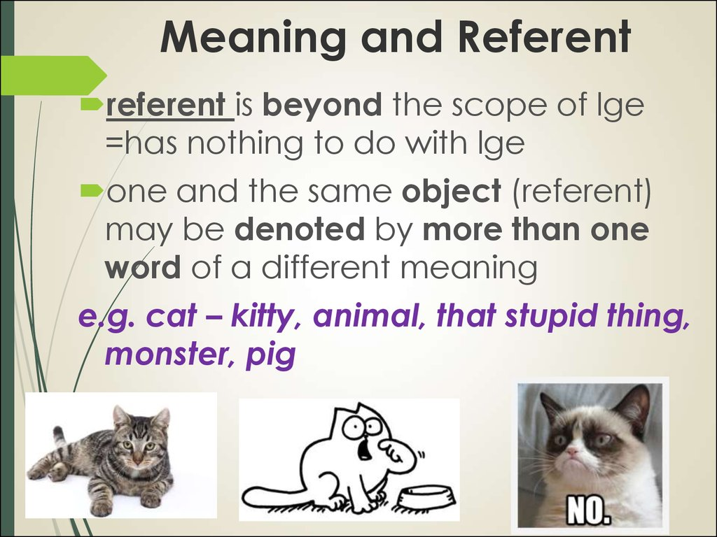 Meaning and Referent