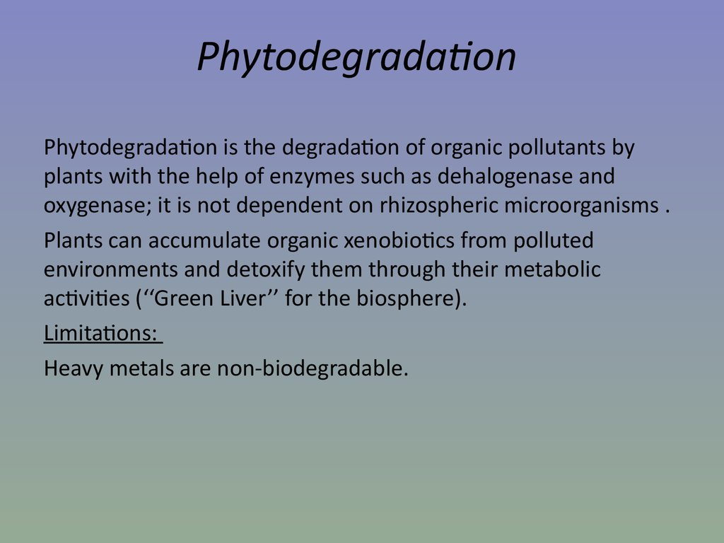 Phytodegradation