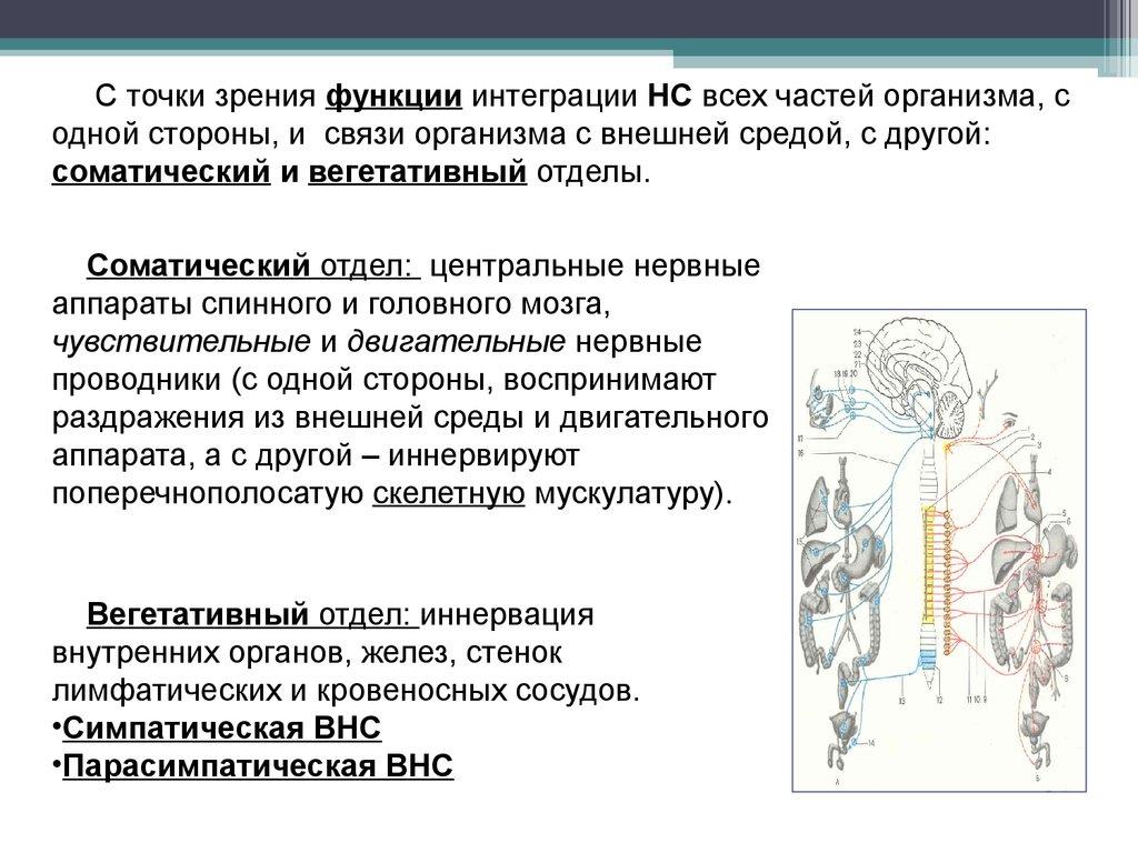 метод чингисхана от паразитов