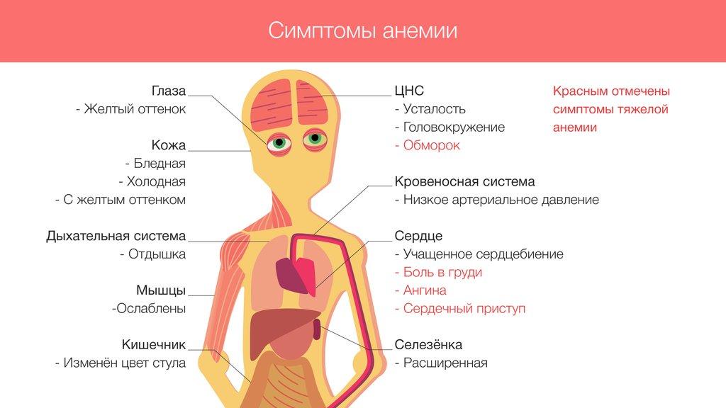 высокий холестерин в крови причины
